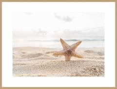 Звезда на пляже